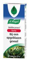 A.Vogel Boldocynara Forte 80pcs